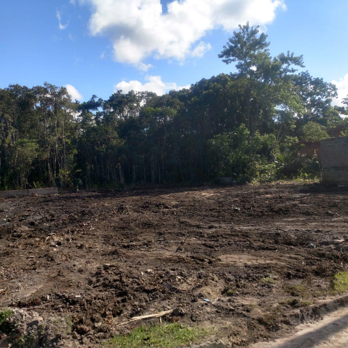 Terrenos em Loteamento fechado em Peruíbe
